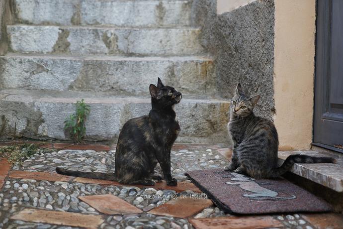 Taormina2019-63