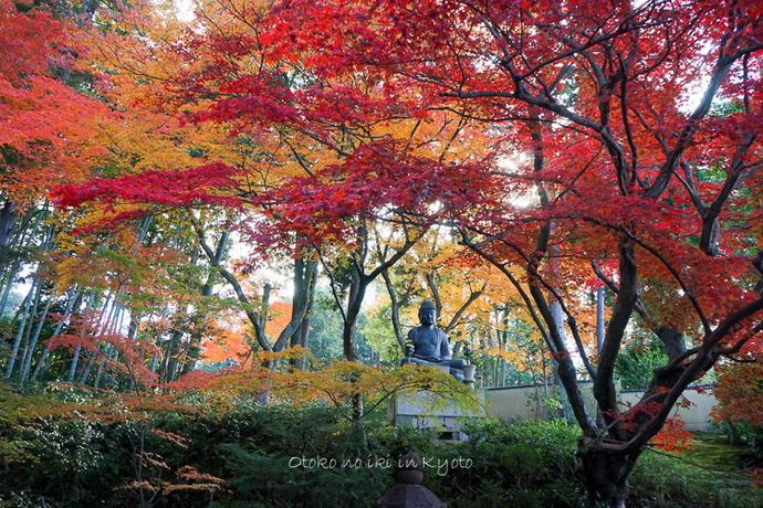 1028栄摂院11月-3