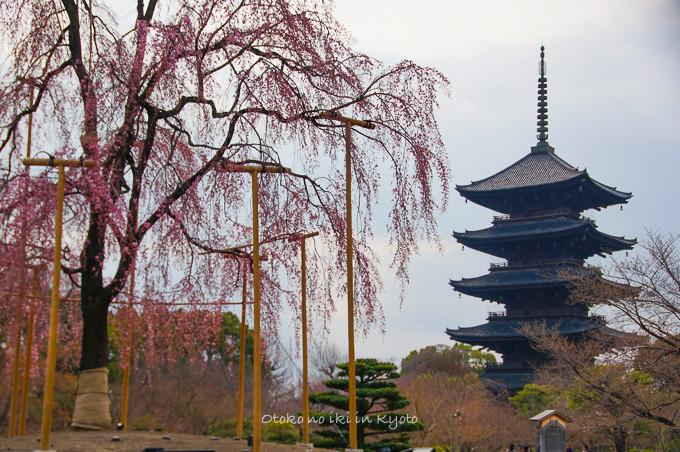 0324京都3月-16