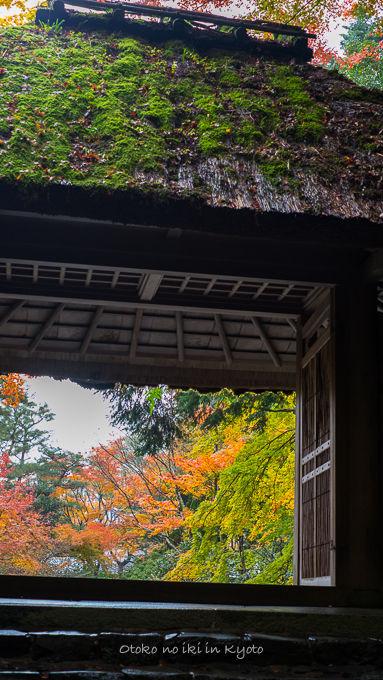1128京都-3