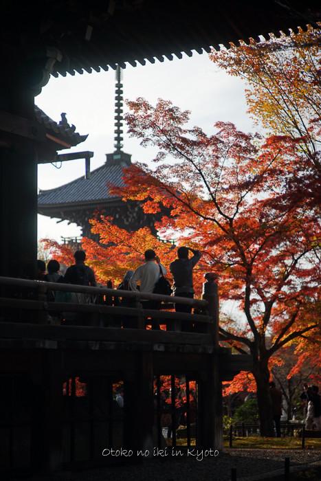 1108京都11月-45