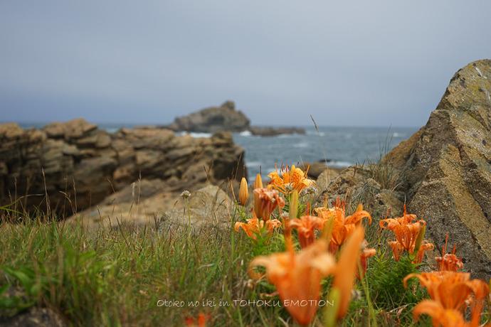 0922種差海岸7月-9