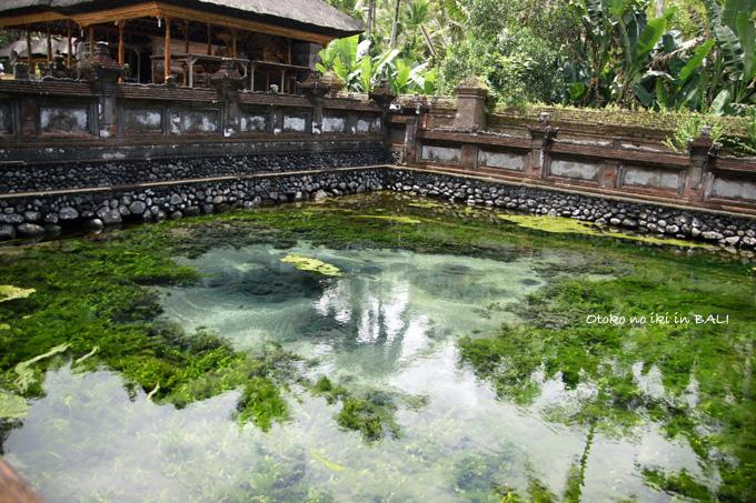 1107-1寺湧き水