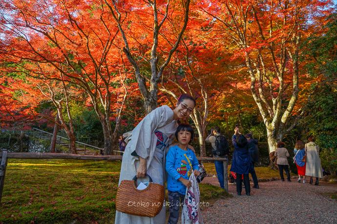 そうだ京都いこう20192019-90