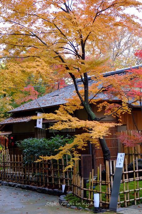 11月京都2012北野天満宮-9