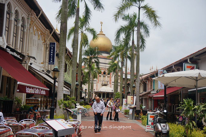 0113Singapore1月-32