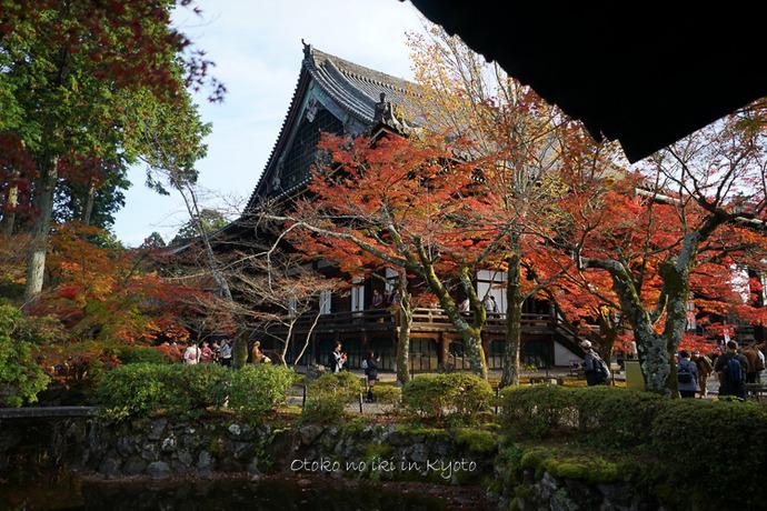1108京都11月-47