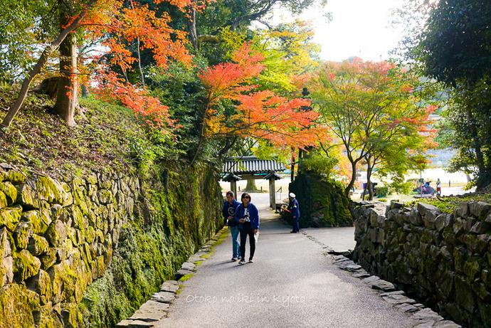 1112京都11月-1