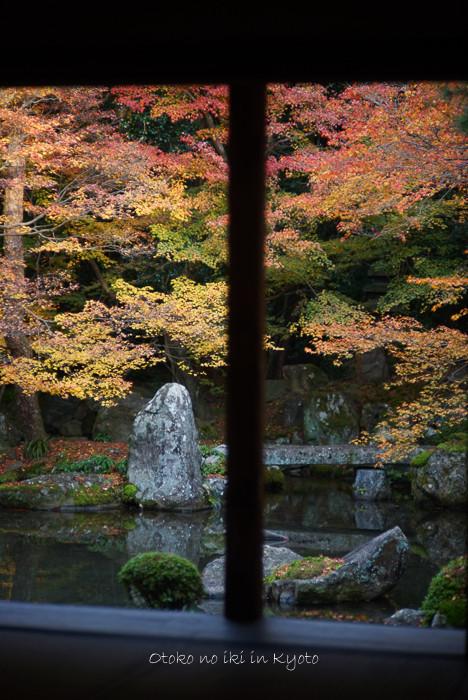 1124京都11月-15