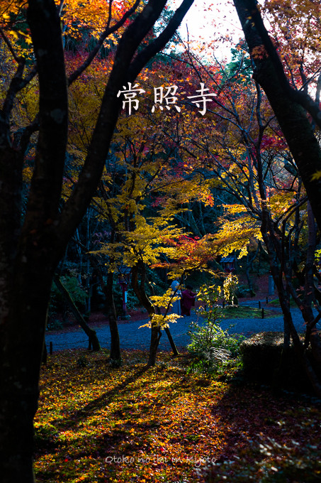 1203常照寺11月-0