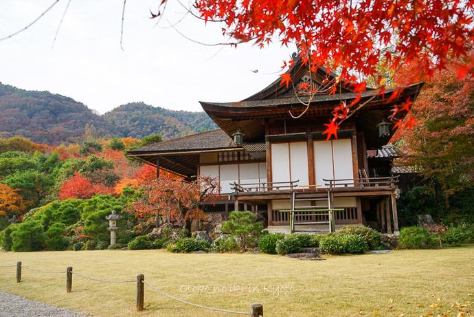 1124京都11月-32
