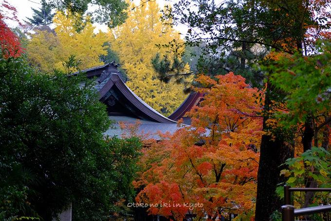 11月京都2012北野天満宮-10