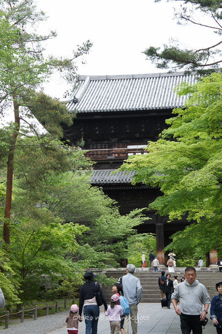 201205京都朝マラソン5月-11