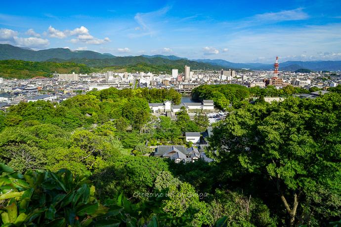 彦根城2019-39
