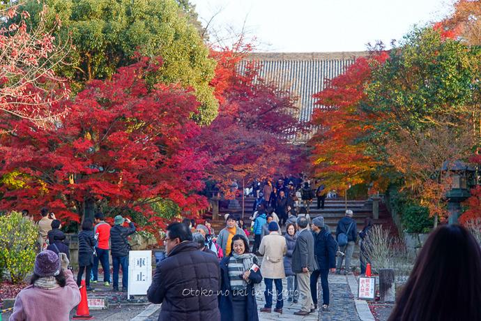 京都112511月-15