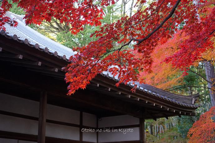1028栄摂院11月-6