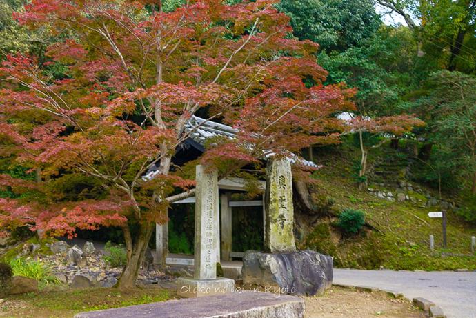 1112京都11月-5