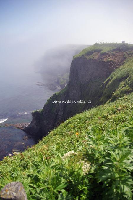 1225-16霧多布岬