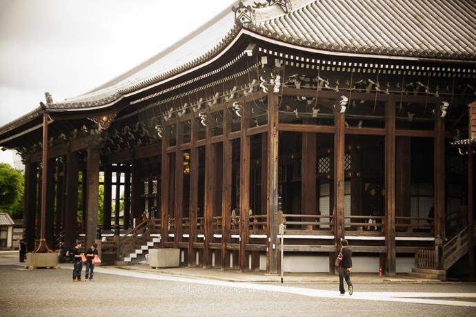 0904西本願寺5月-10