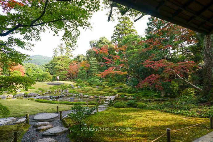 1108京都11月-17
