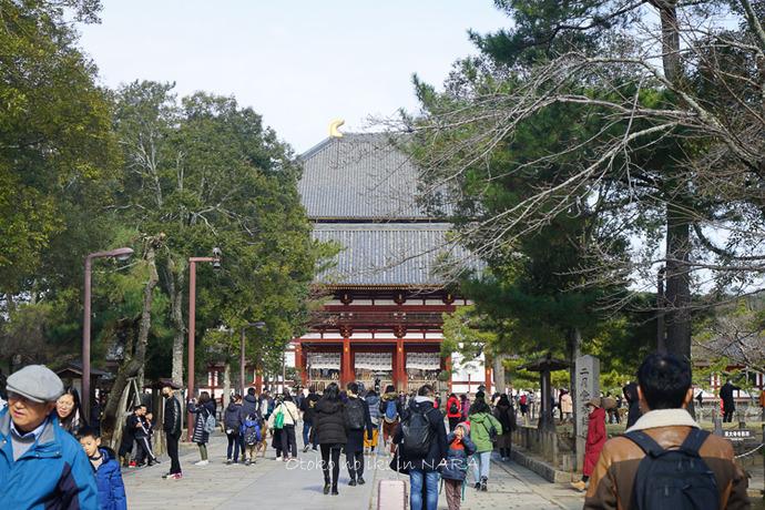 奈良2020-6