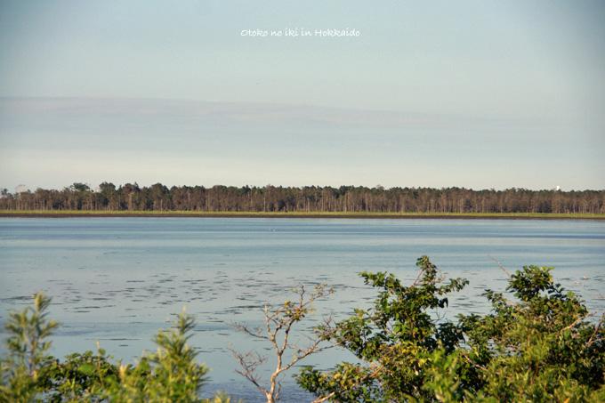 1130-3風蓮湖引2
