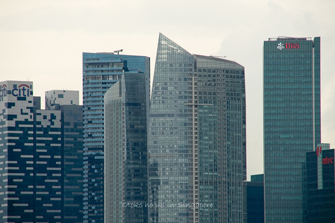 シンガポール20142014-18
