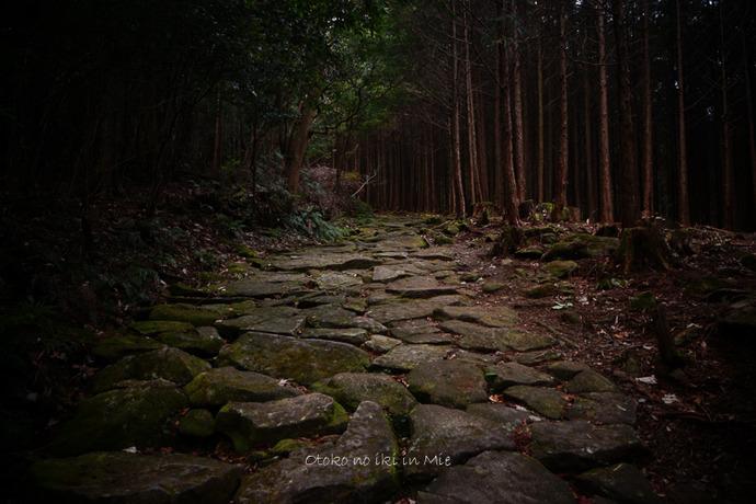 0708熊野古道3月-6