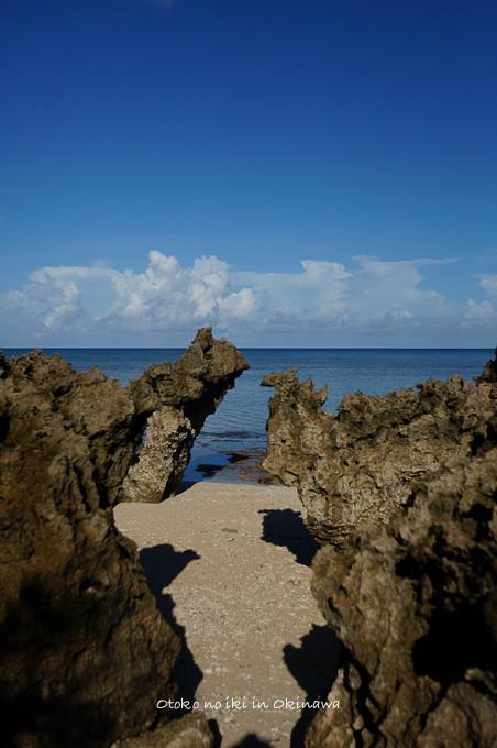0409サンゴの浜9月-7