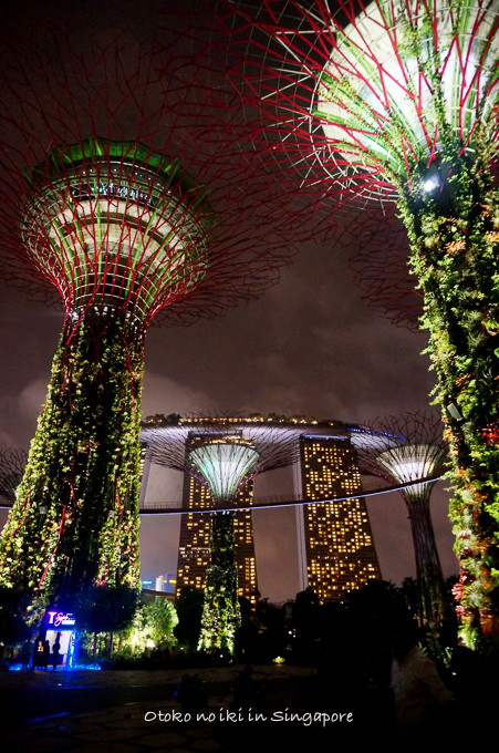 0113Singapore12月-19