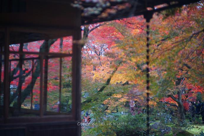 1124京都11月-28