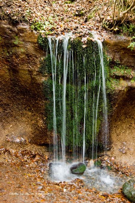 1120-2白糸の滝寄縦