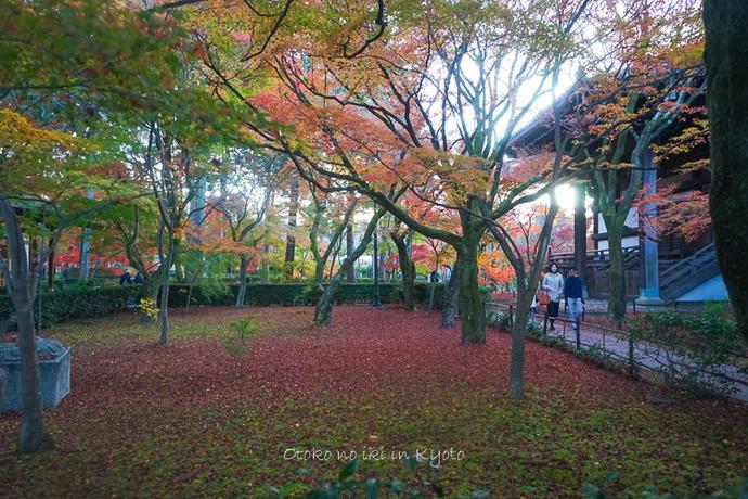 京都112511月-33