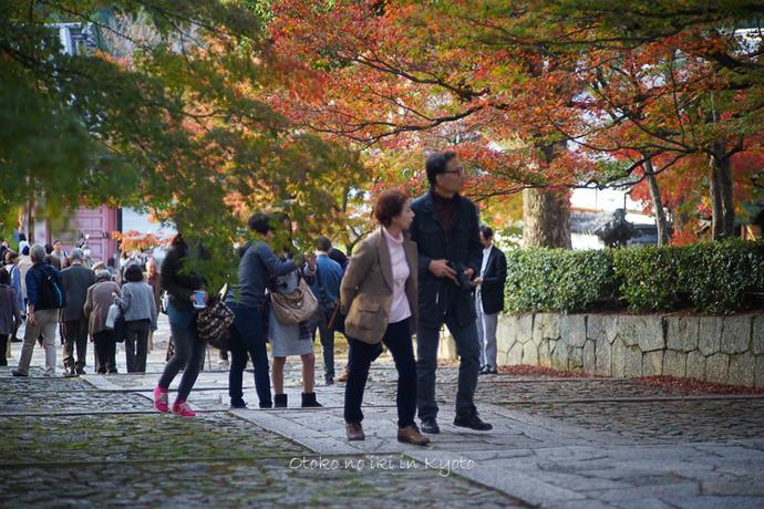1108京都11月-42