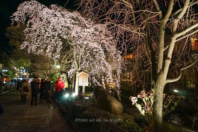 0329京都3月-2