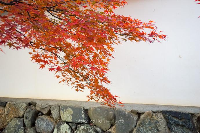 1114天龍寺11月-9