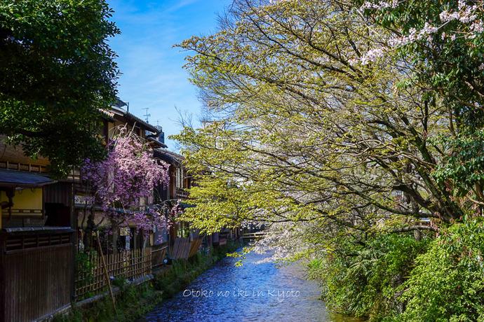 0407京都4月-11