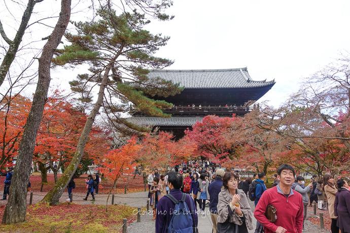 京都1125_RX100朝11月-10