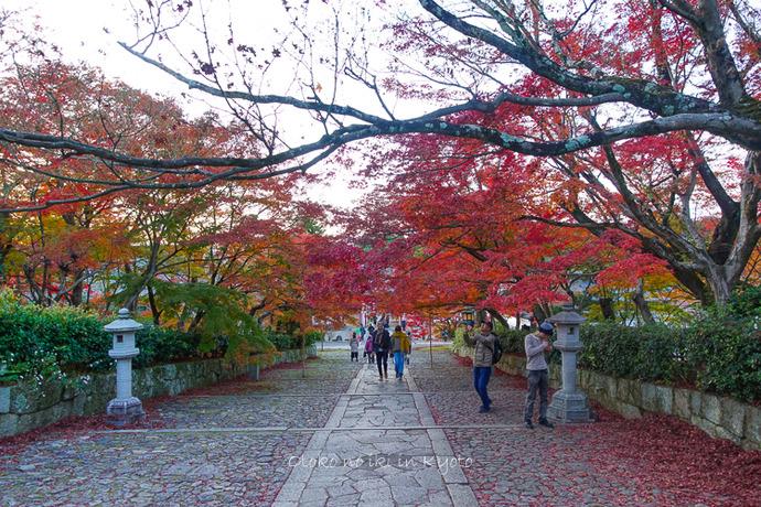 京都1125_RX100夕11月-5