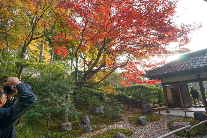 1108京都11月-50