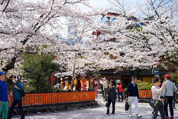 0407京都4月-9