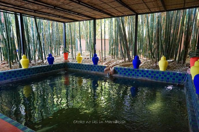 Jardin Majorelle 2017-6