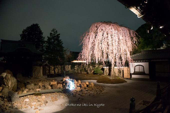 0324京都3月-6