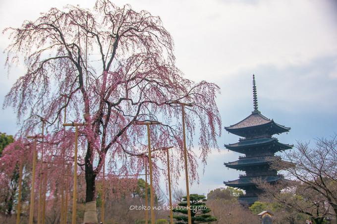 0324京都3月-18