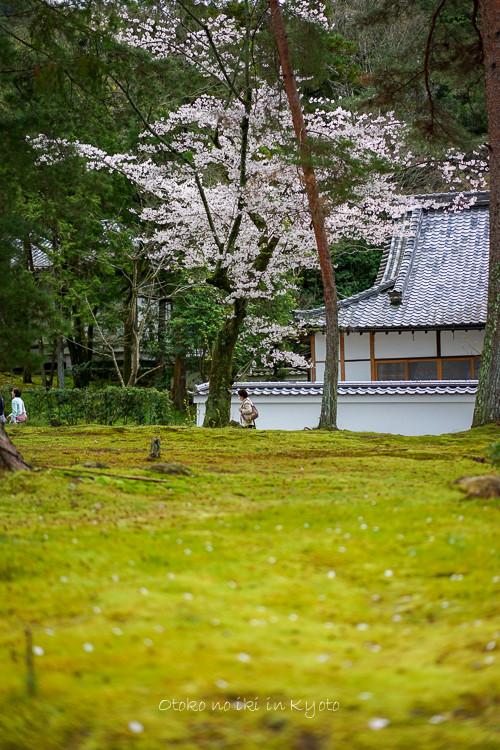 0407京都4月-55