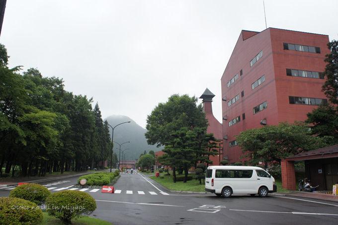 1021-12Sakunami