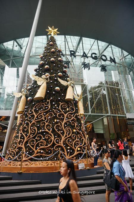 0113Singapore1月-37