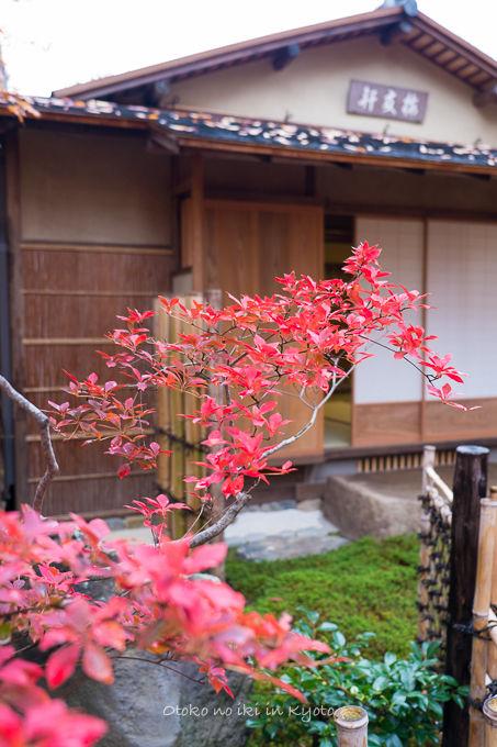 11月京都2012北野天満宮-8