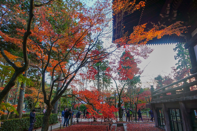京都1125_RX100夕11月-2