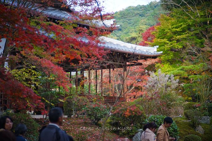 1108京都11月-29